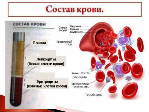 Исследование: состав крови связан с депрессией