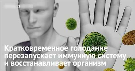 Врачи: голодание восстанавливает иммунную систему