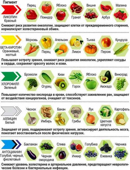 Овощи для похудения,  польза и вред для